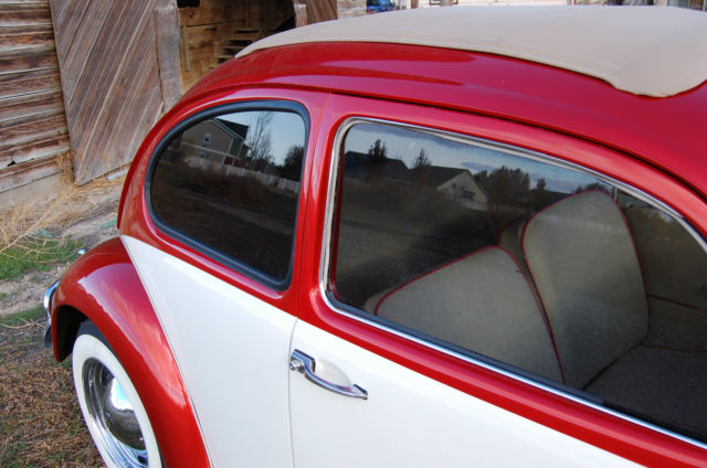 Volkswagen Beetle - Classic Sedan 1964 Custom Tri-Stage Pearl Orange and White For Sale ...