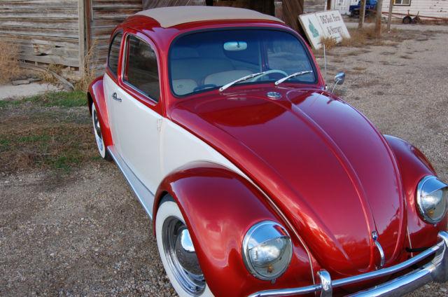 Volkswagen Beetle - Classic Sedan 1964 Custom Tri-Stage Pearl Orange and White For Sale ...
