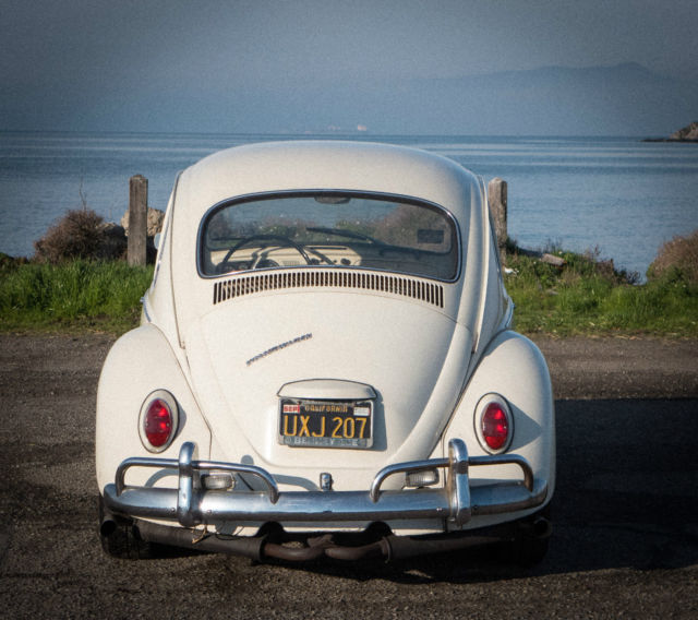 Volkswagen Bug For Sale: Classic Beetle 1967 Lotus White For