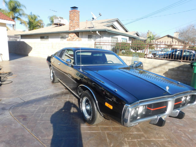 1974 dodge charger special edition