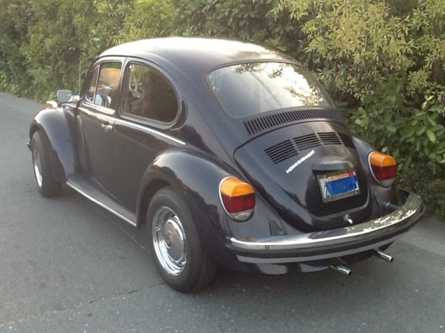 Volkswagen beetle classic xfgiventypexfieldstype for sale 1974 volkswagen beetle classic freerunsca Images