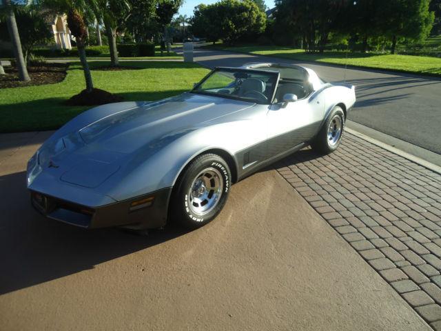 chevrolet corvette coupe 1981 silver gray for sale rh findclassicars com 1981 corvette color chart 1981 corvette color chart