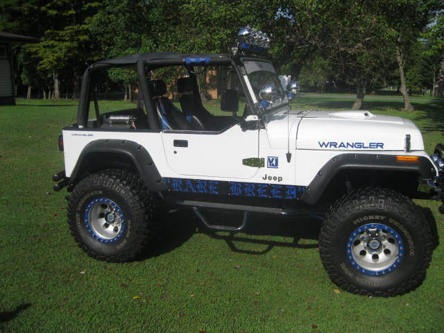 jeep wrangler 1992 white for sale 2j4fy29s7nj559909 1992 jeep wrangler yj custom built 360. Black Bedroom Furniture Sets. Home Design Ideas