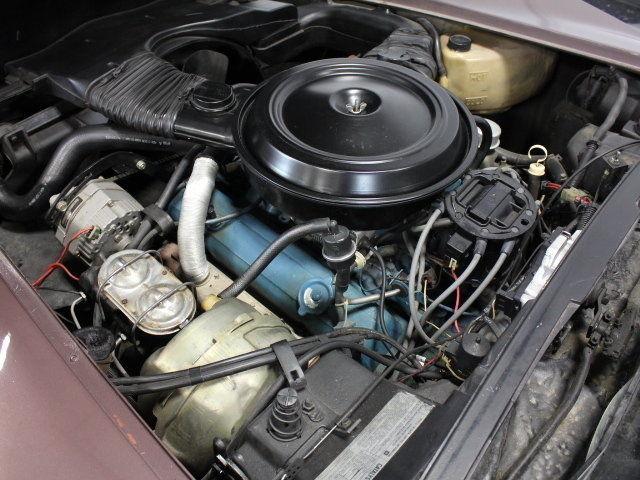 Chevrolet Corvette Coupe 1979 Purple For Sale. #'S ...