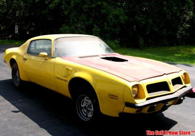 Pontiac Trans Am Coupe 1974 Yellow For Sale 2V87X4N127775 Vintage